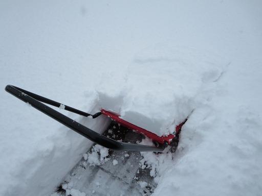 鯖江市東鯖江2丁目フジモト不動産の積雪状況2015年2月10日-2