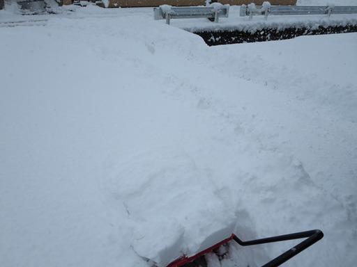 鯖江市東鯖江2丁目フジモト不動産の積雪状況2015年2月10日