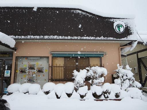 鯖江市東鯖江2丁目フジモト不動産の積雪状況2015年2月10日-3